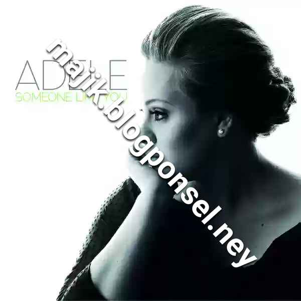 ADELE – SOMEONE LIKE YOU (ITUNES PLUS AAC M4A)