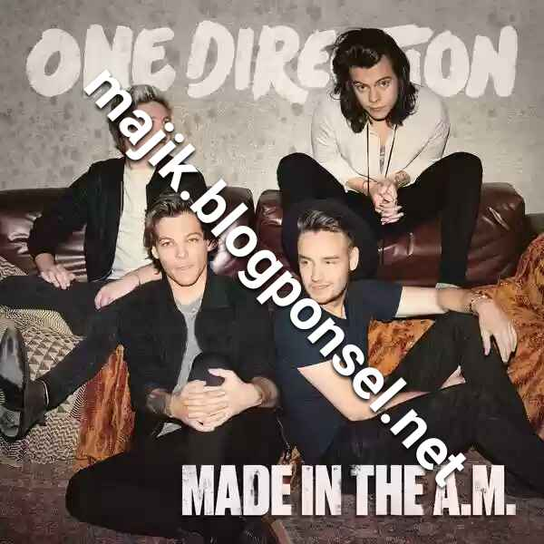 One Direction – Made In The A.M. (iTunes Plus AAC M4A)